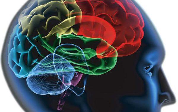 Beyinde temizlik yapan sistem keşfedildi
